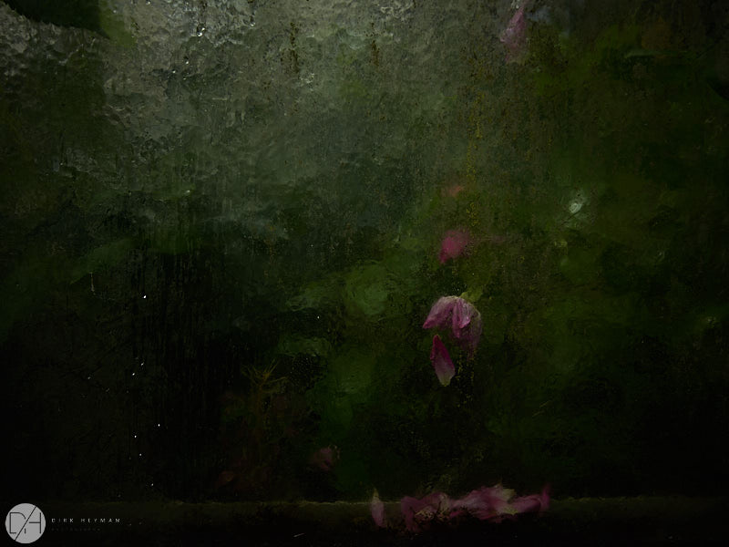 Garden Jacques Wirtz Spring by D Heyman 7249.jpg