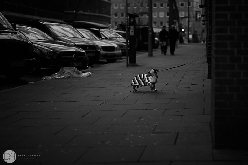 Hamburg streets 2016 by Dirk Heyman 1106.jpg