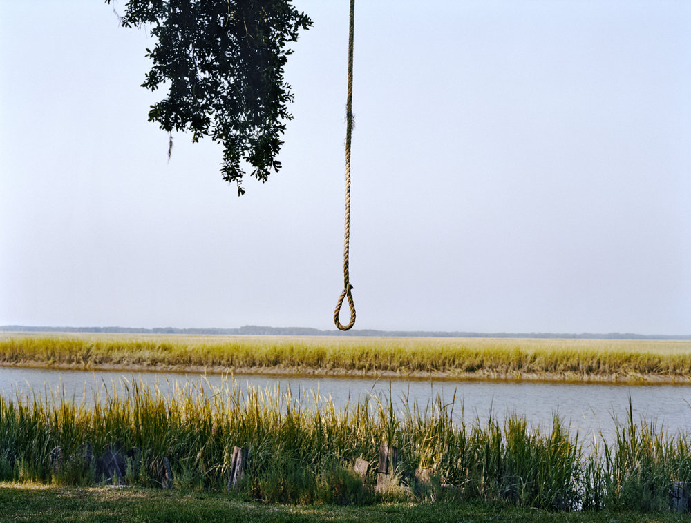 Rope Swing, Wadmawlaw, South Carolina