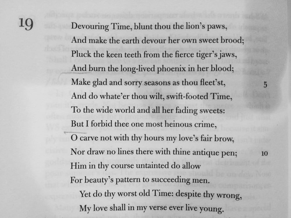 Sonnet 19.