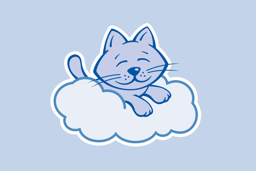 Cloud9Cats_1500x1000_1.jpg