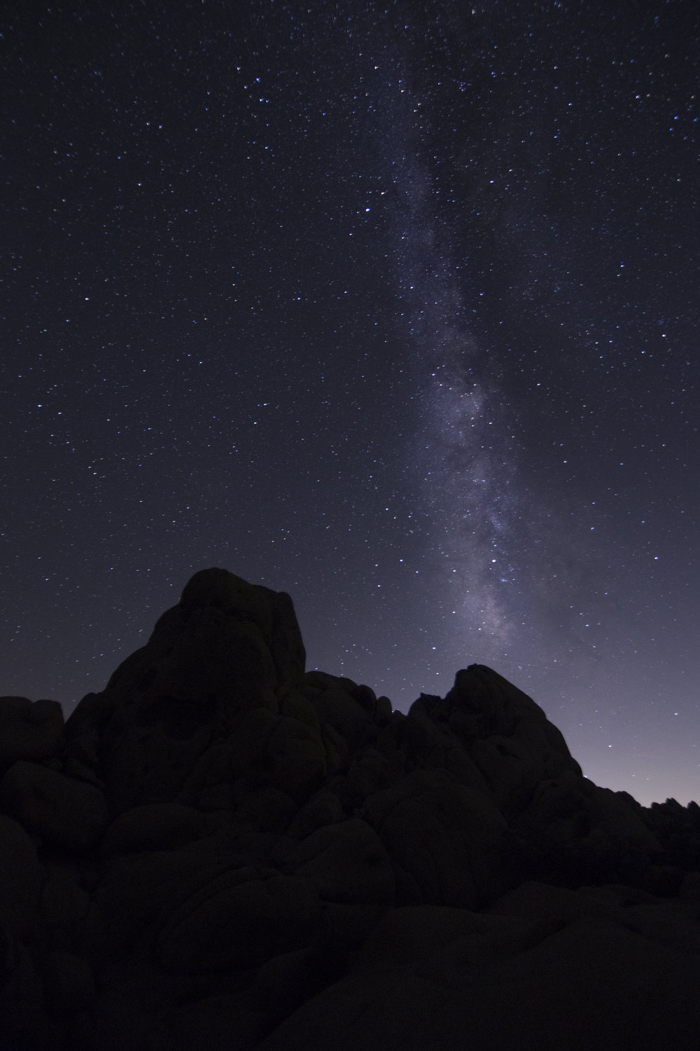 joshuatree_milkyway1.jpg