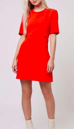 Topshop Popper Shift Dress