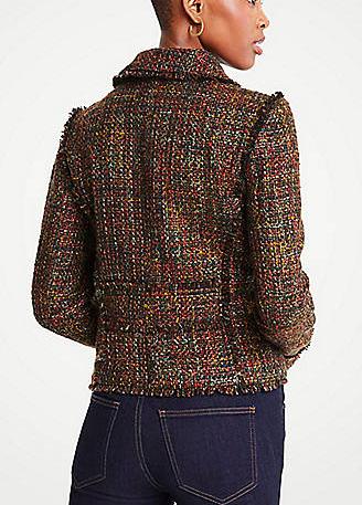 Ann Taylor Fringe Tweed Moto Jacket