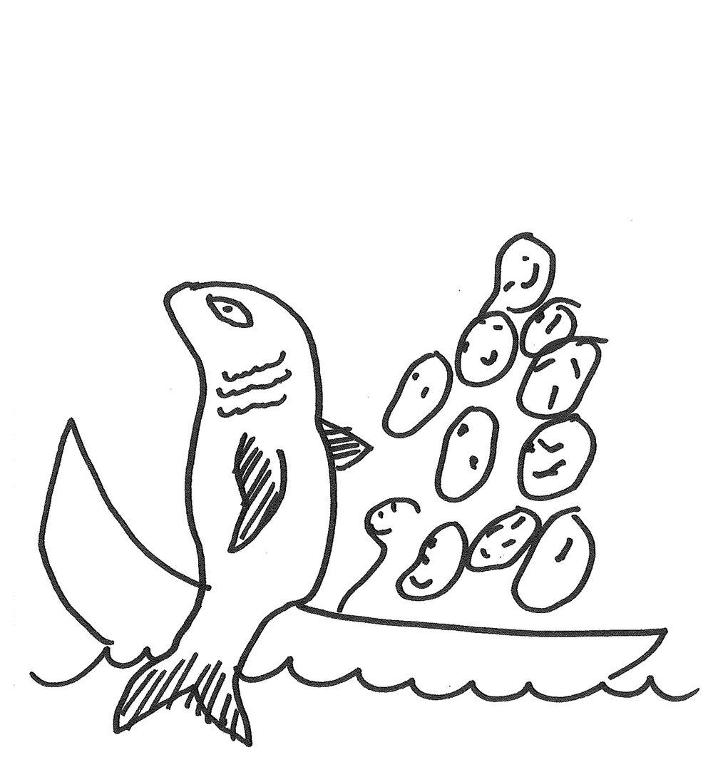 fishclearence.jpg