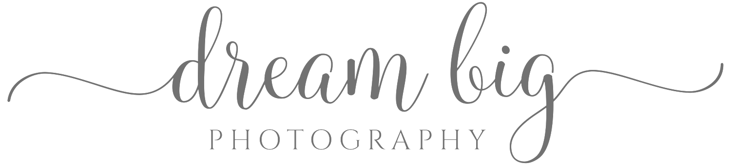 dream big photography