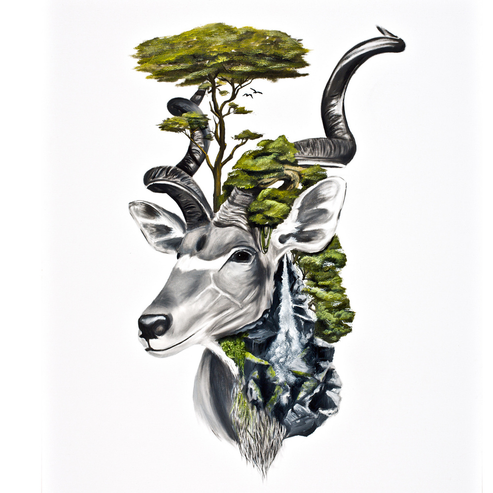 kudu-falls-square.jpg
