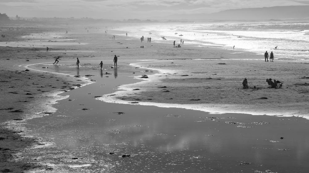 Beach Oddity