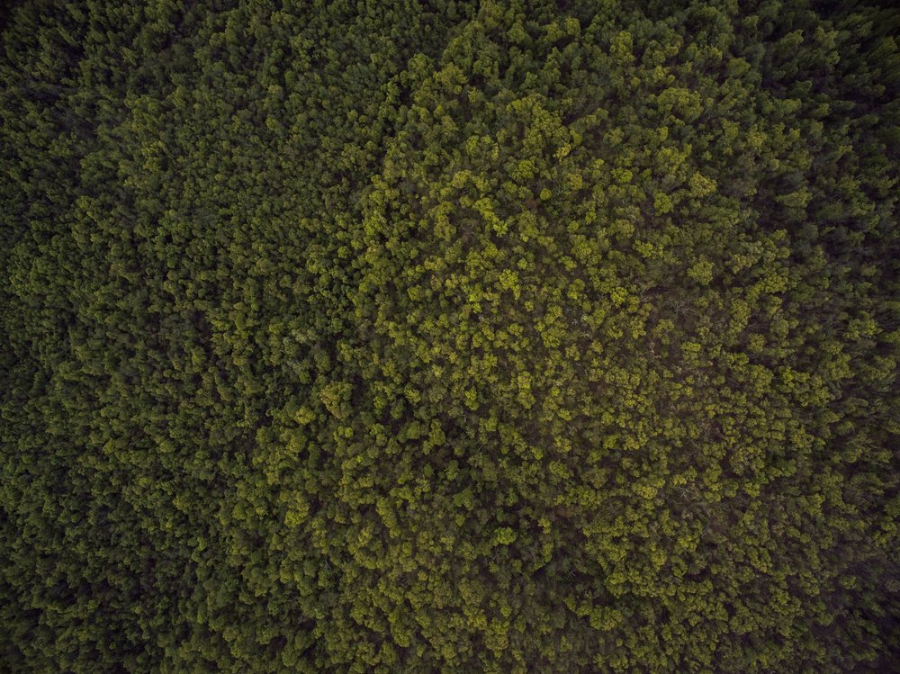 ozark-drones-21024.jpg