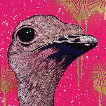 200_ostrich.jpg