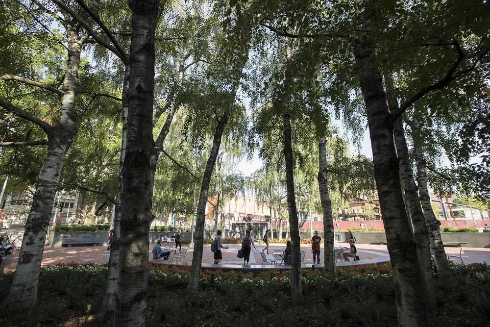 OConnor_Plaza_006_Joseph V. LabolitoTemple University_smaller image.jpg