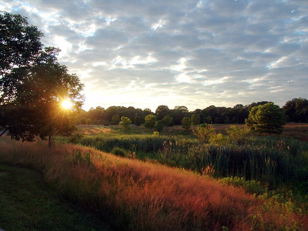 Pennswood_sunrise.jpg