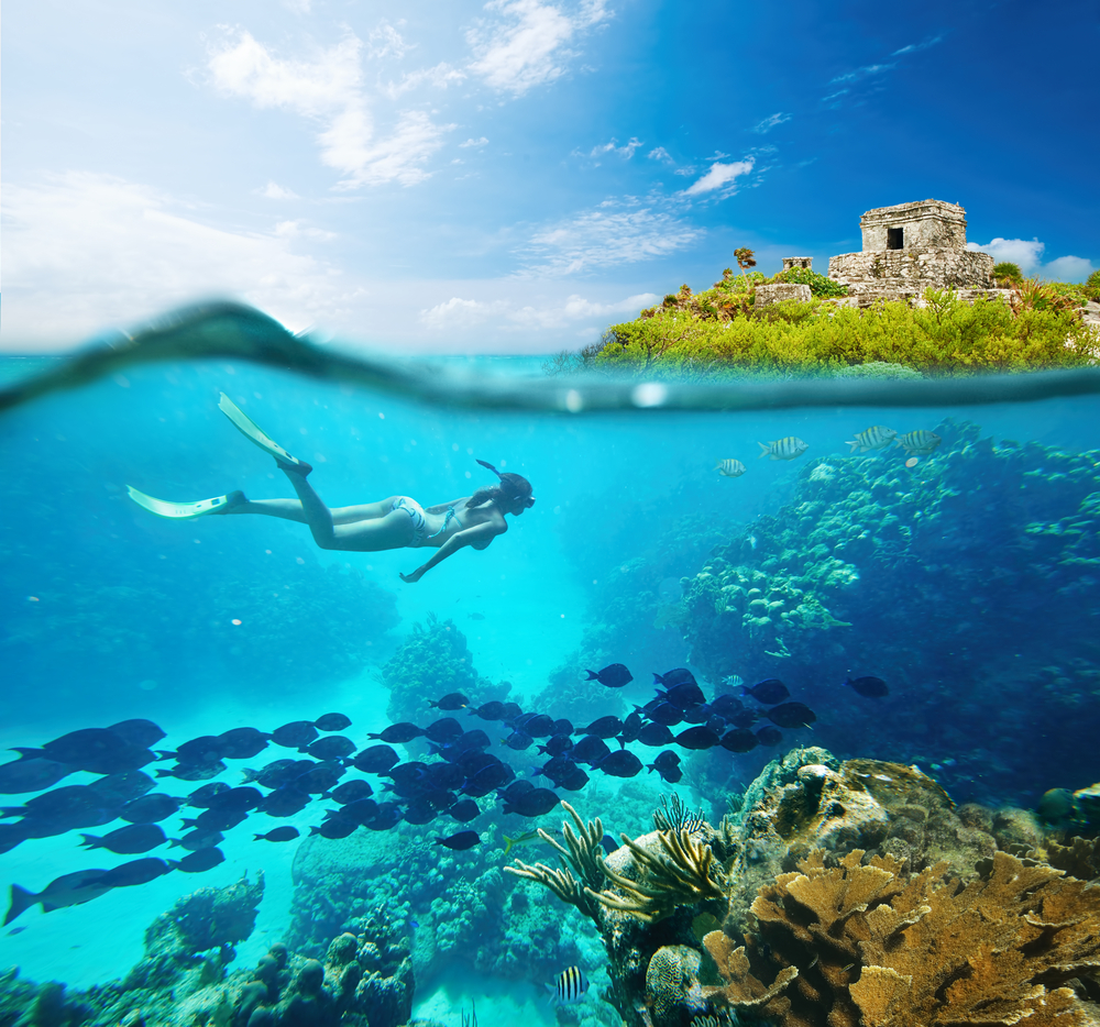 Snorkel in the CARIBBEAN sea in front of tulum ruins.  Quintana roo, mexico.