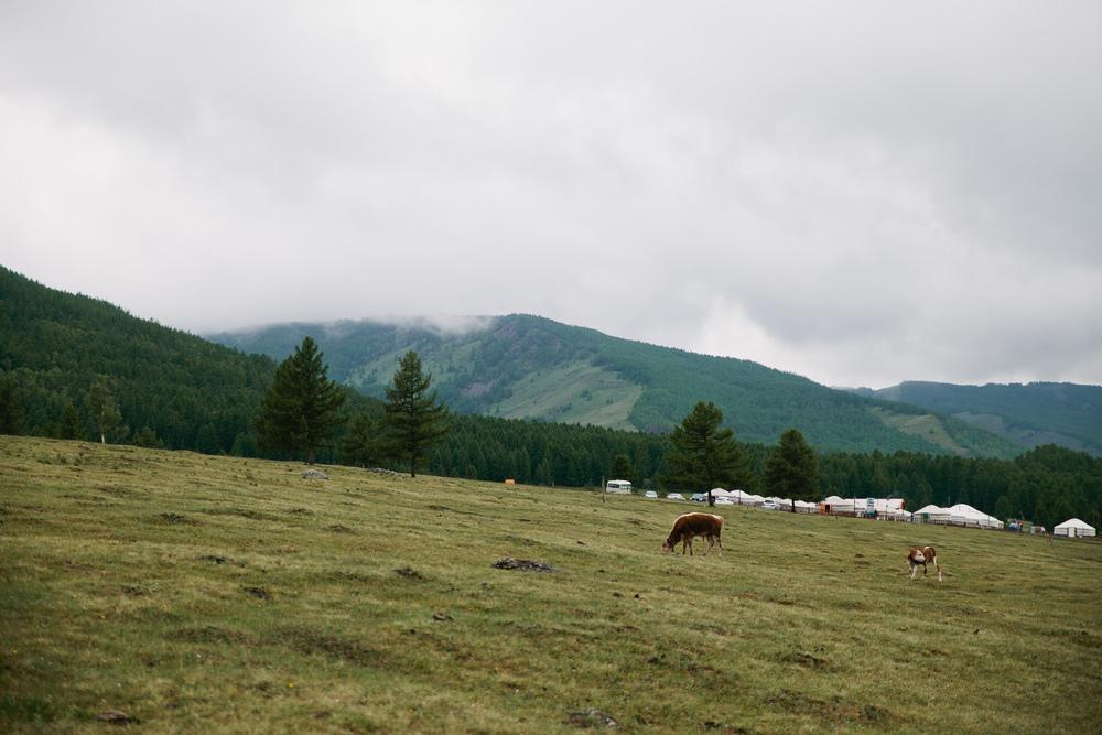 Mongolia-195.jpg