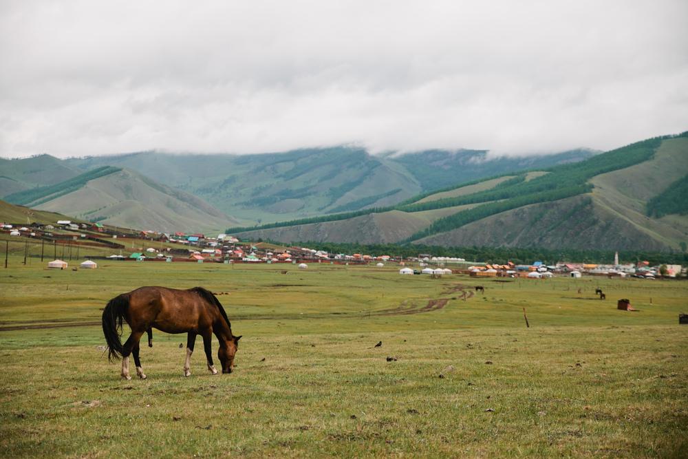Mongolia-206.jpg