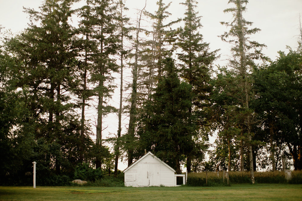 white chicken shed with tall evergreen trees on farmland in Iowa