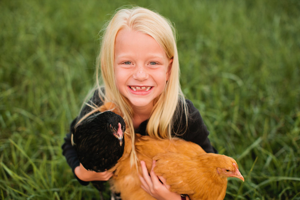 little blond girl with her two chickens in lifestyle family photos waterloo cedar falls Fort Dodge Iowa