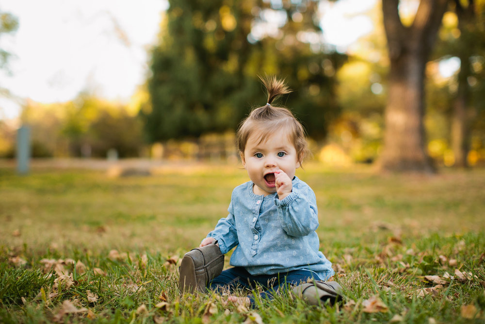 family photographers in Des Moines Amelia Renee Photography fall family mini-sessions