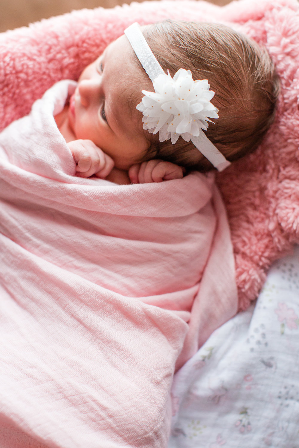 Amelia Renee   Photography   specializes in   newborn  , maternity, child and family   photography   in   Des Moines  , IA and surrounding areas!