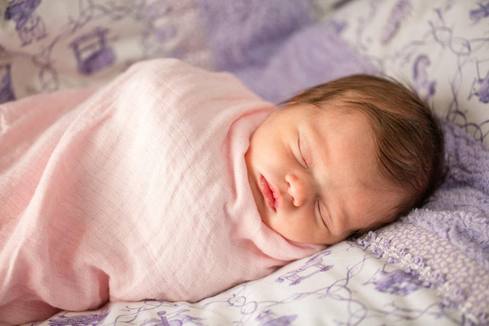 sweet little baby newborn photos 5 days old Amelia Renee Photography