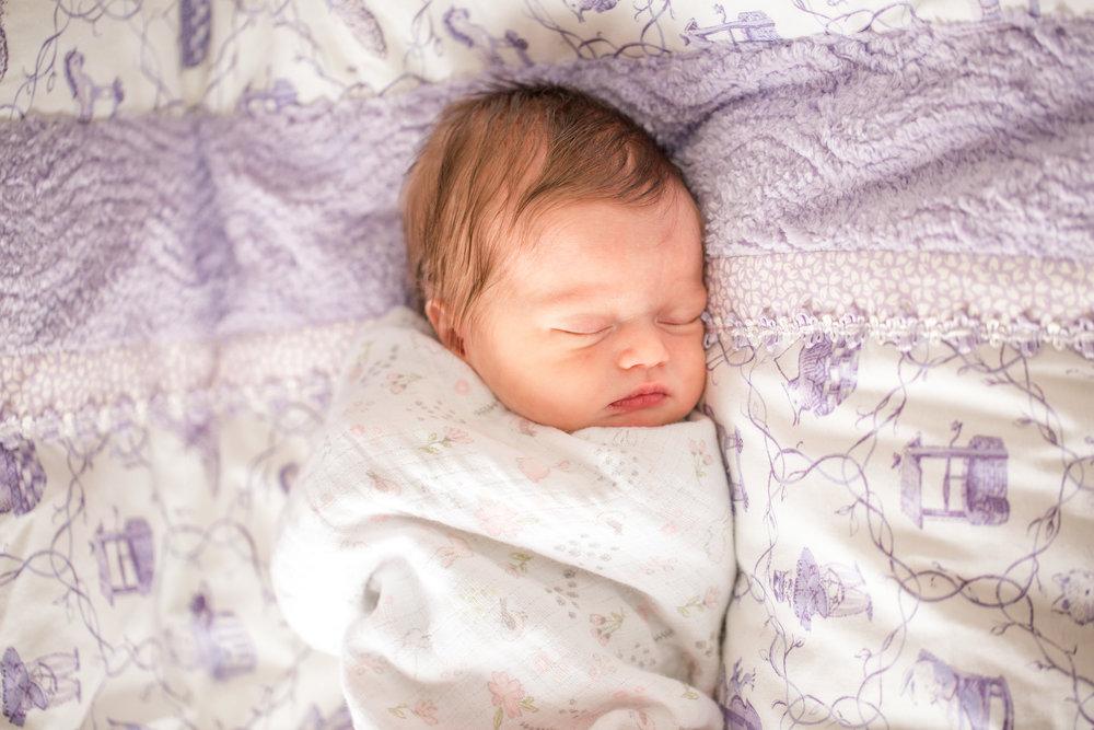 Brezlin baby newborn photos des Moines iowa ankeny