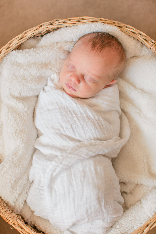 amelia renee photography newborn baby photos in-home