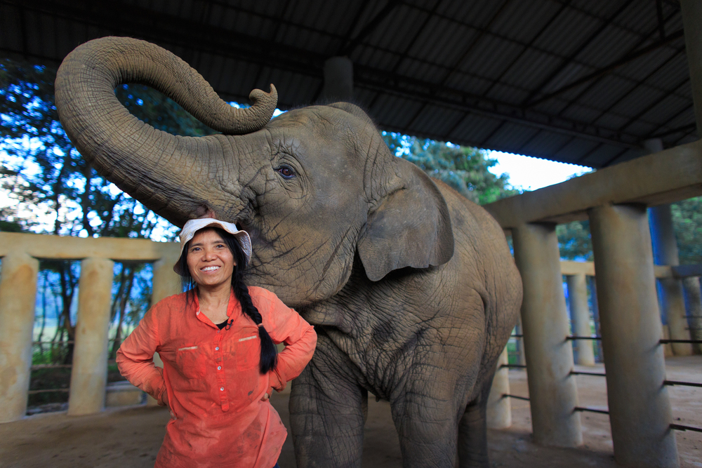 Lek Chailert poses for a portrait after her daily ritual of singing Thai lullabies to her elephants to help them fall asleep.