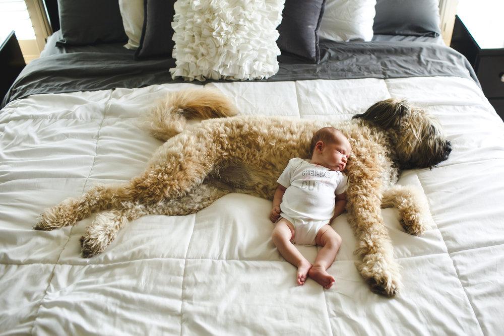 BabyTacie (27).jpg
