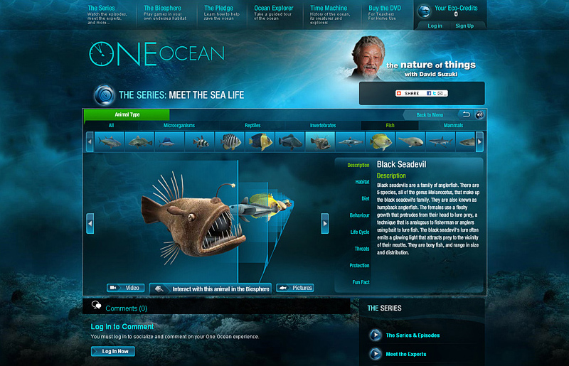 what_we_do_oneocean_by_Pixel_Reborn_Inc.jpg