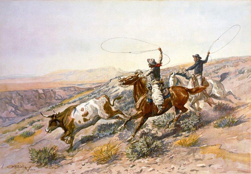 The first spanish longhorns.jpg