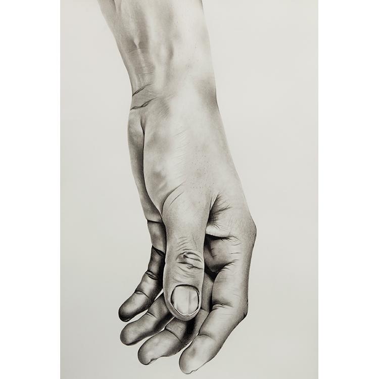 the_hand.jpg