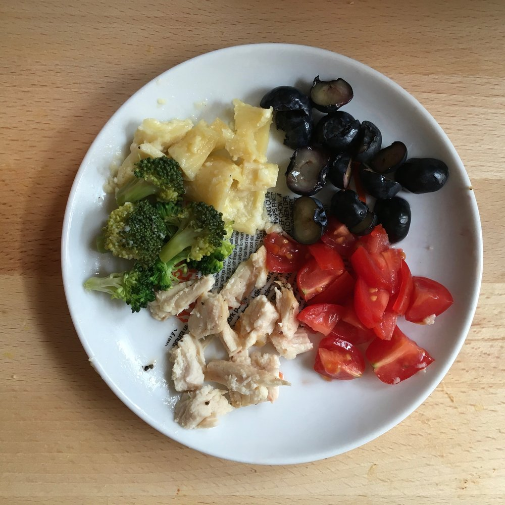 A meal for Ava at 10 months old: broccoli, leftover pasta with alfredo sauce, blueberries, tomatoes, and leftover chicken