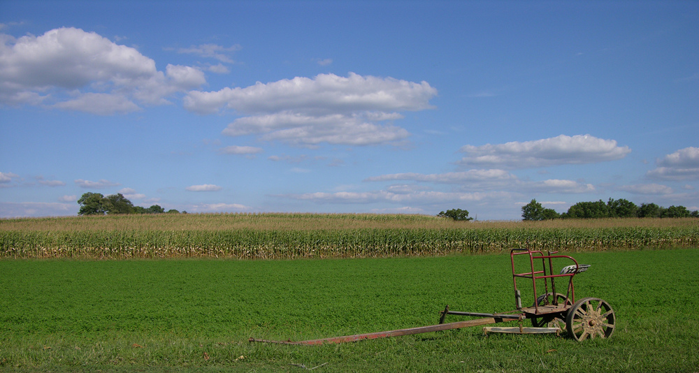 Washington County Farm