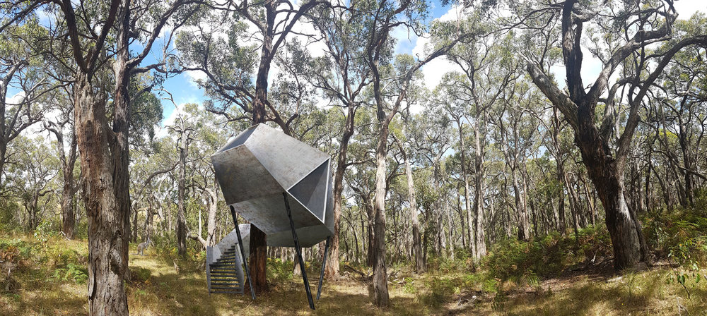 Moloughney Designs Redhill Treehouse 1.jpg