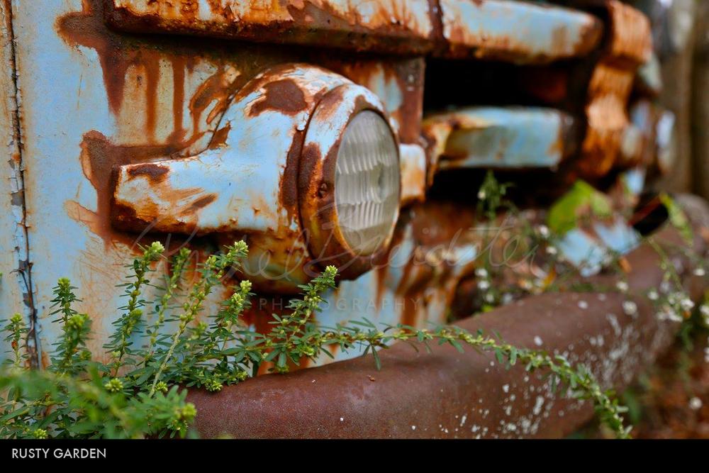 Rusty-Garden2.jpg