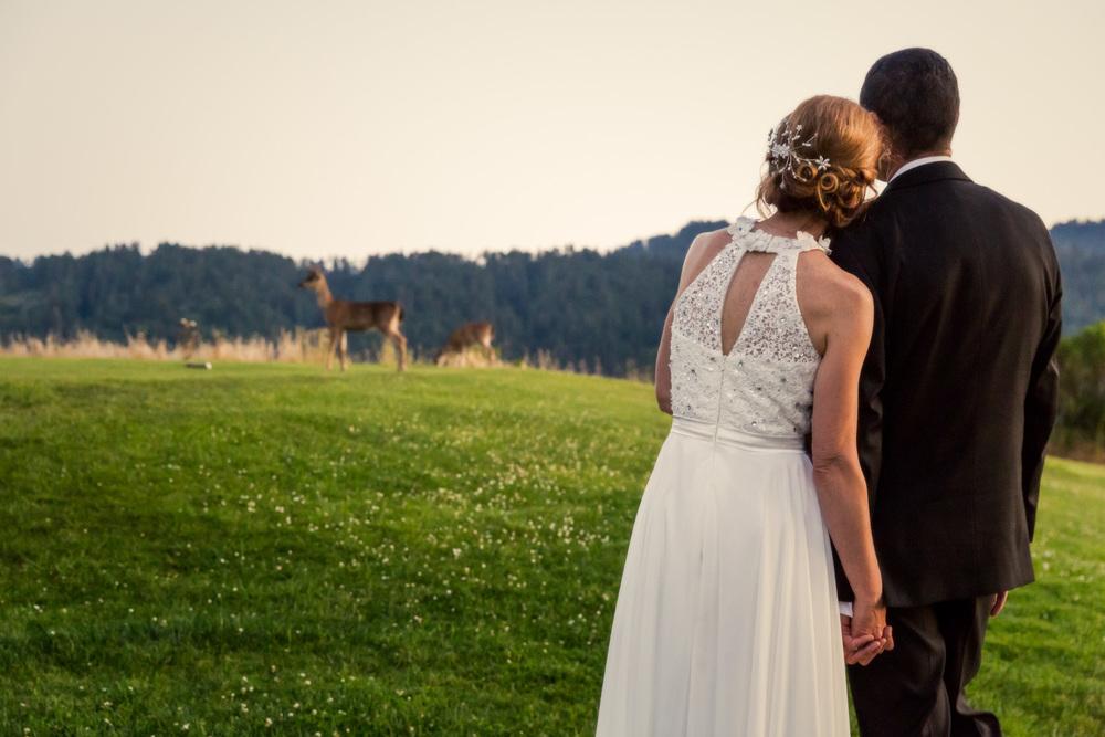 Sharon+Al_Crystal Springs Wedding-25.jpg