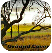 Ground Cover