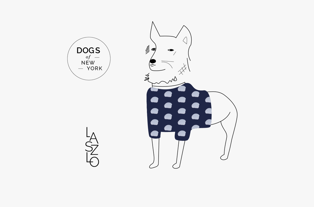 A-Dog-for-Every-Season-Pages_Hero.png