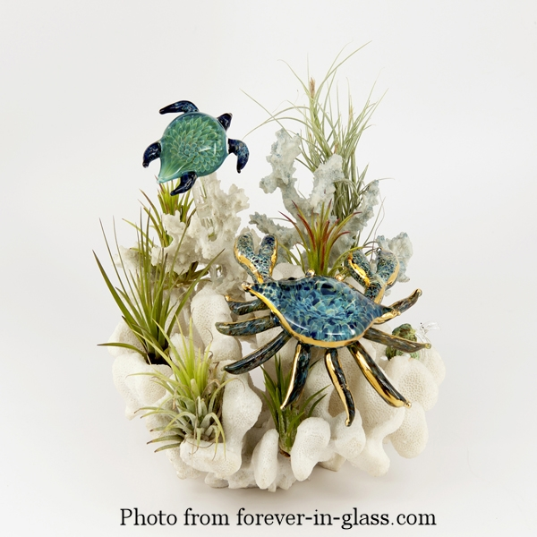 crab-and-turtle-over-coral.jpg