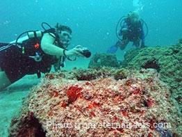 People-underwater.jpg