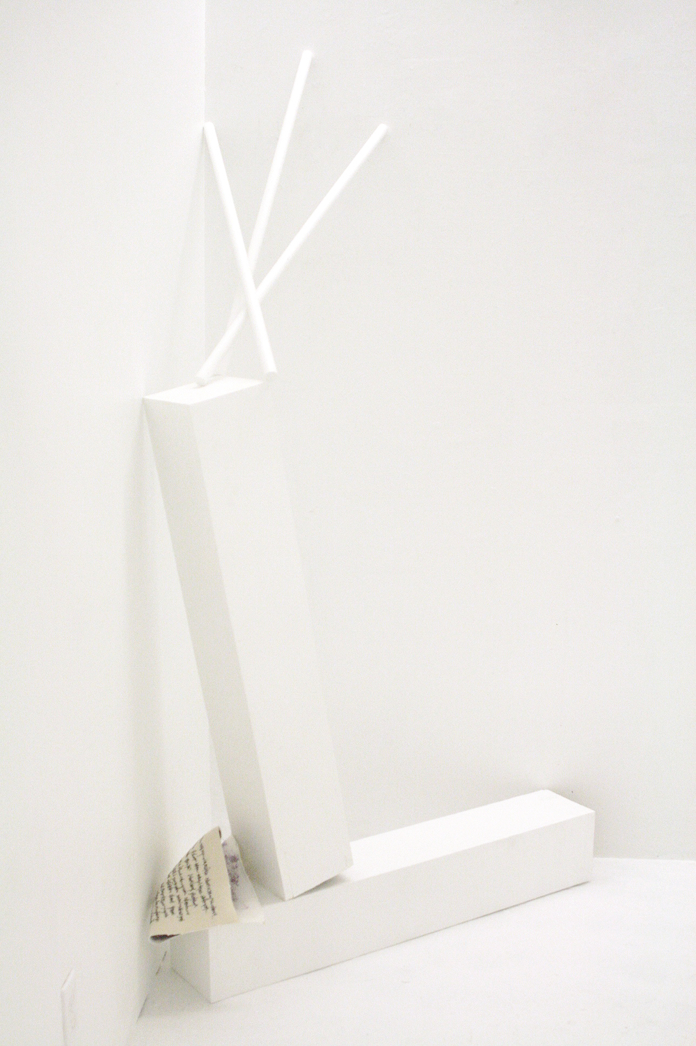 Invisible Monster Mixed Media Dimensions variable, approximately 43 x 22 x 70 in. 2015