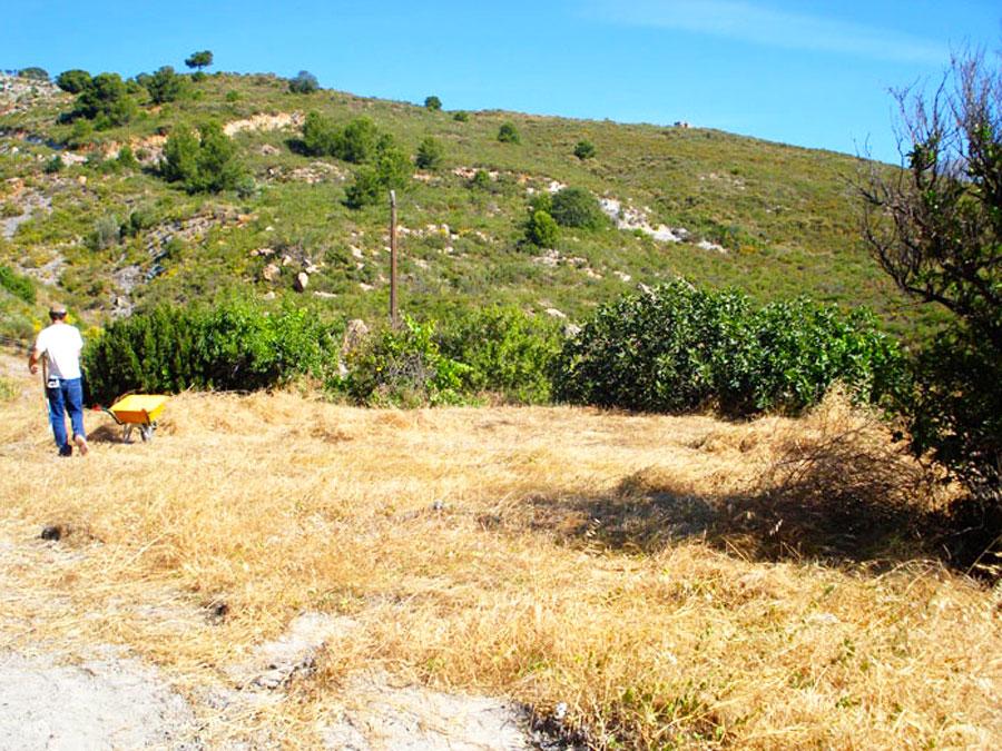 mandala-2009-start1.jpg