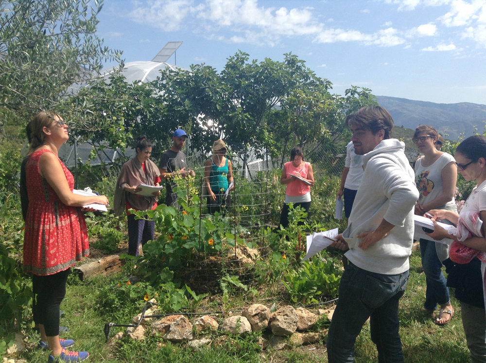 PDC 2016 students observing permaculture principles in the garden