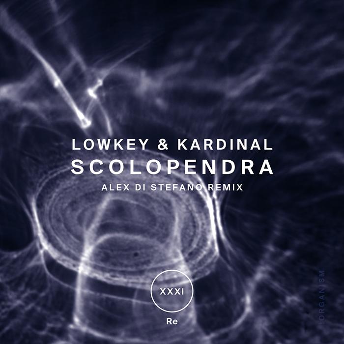 Lowkey & Kardinal - Scolopendra (+Alex Di Stefano Remix)