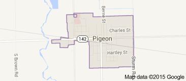 Pigeon Map