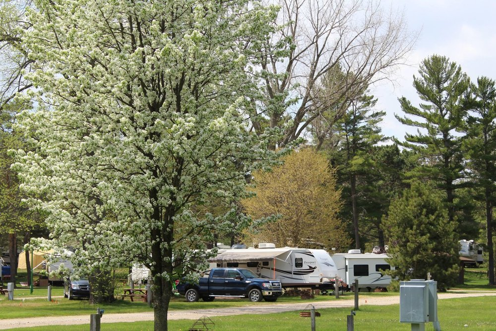 North Park Campground Harbor Beach.jpg