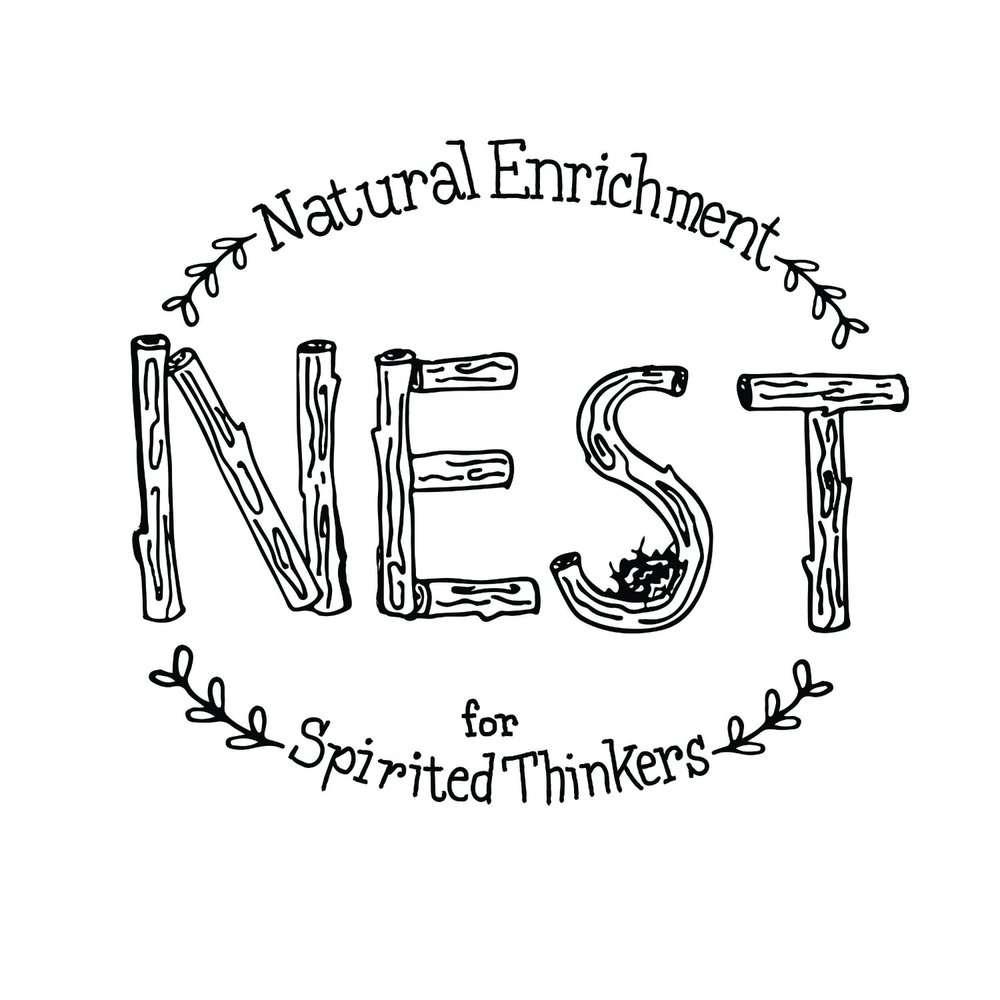 NEST Kids Center Logo
