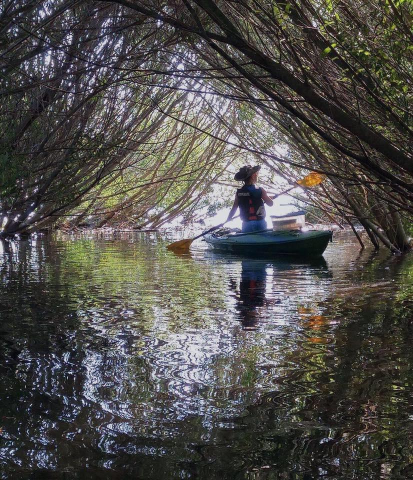 HBK Kayak Under Trees.jpg