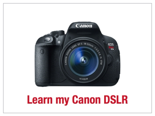 Click to read the Learn my Canon DSLR slides.