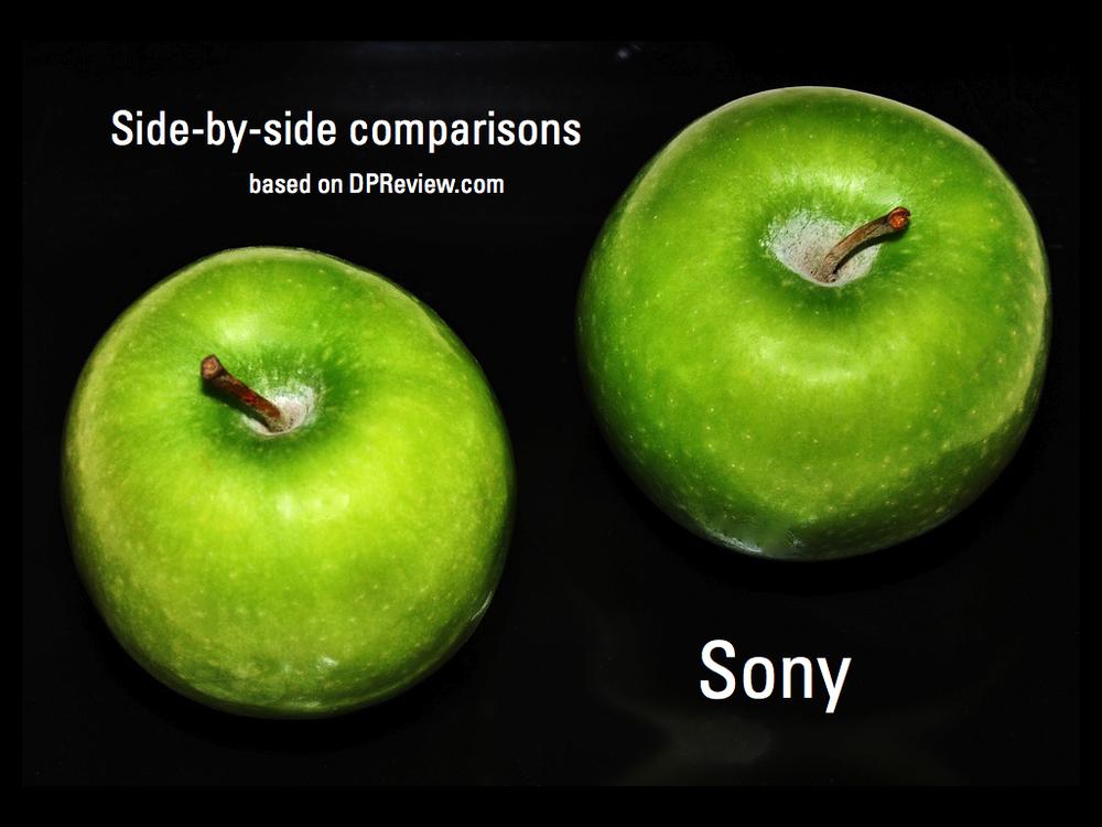 side-by-side-sony.005.jpg